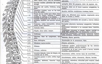 Nervios en la Columna Vertebral
