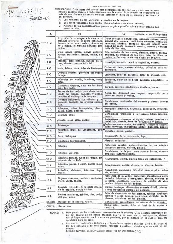 Distribución del sistema nervioso en la columna vertebral. Cada parte del cuerpo está controlada por los nervios y cada uno de esos nervios conecta directa o indirectamente con la espina. Este cuadro fue recopilado en más de una docena de textos médicos estándar y libros de referencia y se muestra en columnas, A: Los nombres de las vertebras y nervios en la espina. B: Las áreas conocidas para recibir fibras nerviosas de estos nervios. C: Algunas de las condiciones que pueden seguir a presión sobre o interferencia con estos nervios.